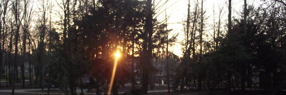 cropped-2012-01-16-02-40-32.jpg